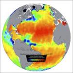 Sea Surface Salinity on Projection Sphere